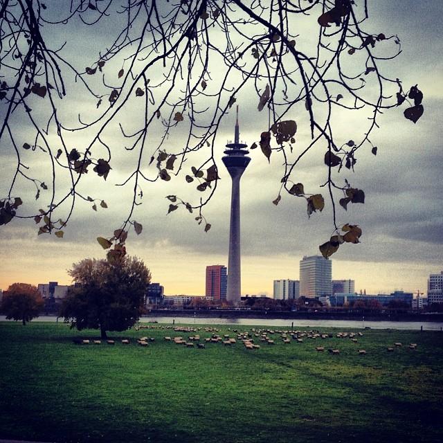 Langsam ist der Herbst nicht mehr zu übersehen…