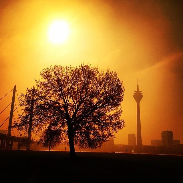Lichtstimmung am Rheinufer…