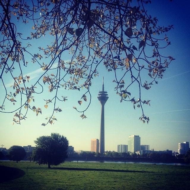 Einen schönen Frühlingsmorgäähhn euch allen :-)