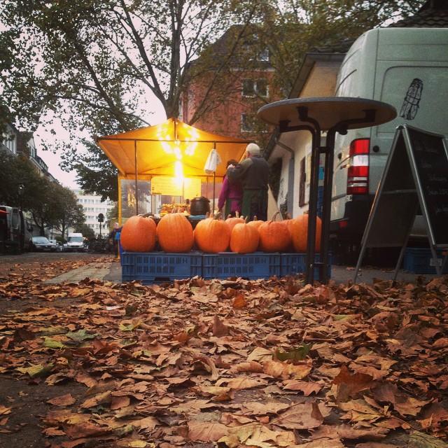 Herbstliches einkaufen auf dem Markt