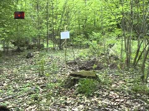 Hambacher Forst – Ein Monat Waldbesetzung