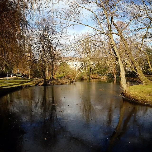 Klare, frische Luft und dazu ein wenig Ruhe. Kurze Stippvisite im Florapark...