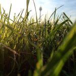 Frische Luft - tief durchatmen - die neue Woche kann kommen :-)