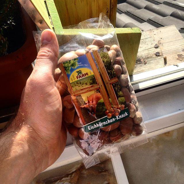 Es gibt auch Snacks aus dem Handel für Eichhörnchen :-) mal sehen ob diese besser ankommen als die selbst gesammelten...