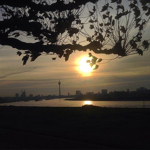Morgendliche Auszeit an der Biegung des Flusses...