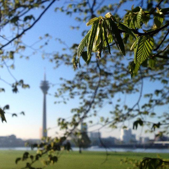 Guten Morgen Düsseldorf :-)