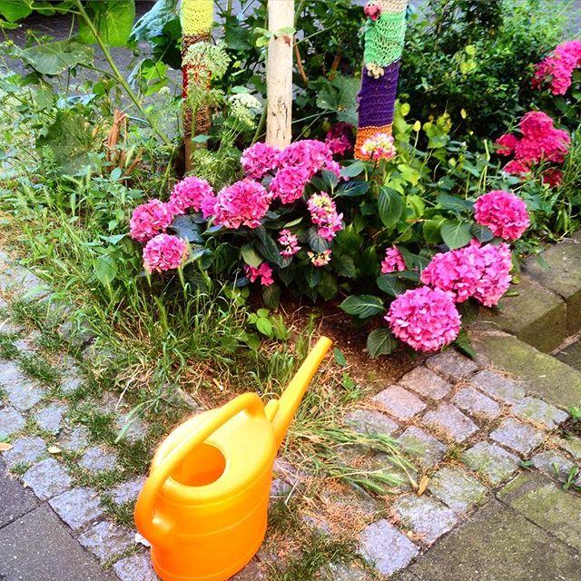 ... ist zwar schweißtreibend - aber nur fair :-) einfach der Baumscheibe nebenan mal ein, zwei Kannen mit Wasser spendieren. Als kleine Geste ;-) #urbangardening #daily