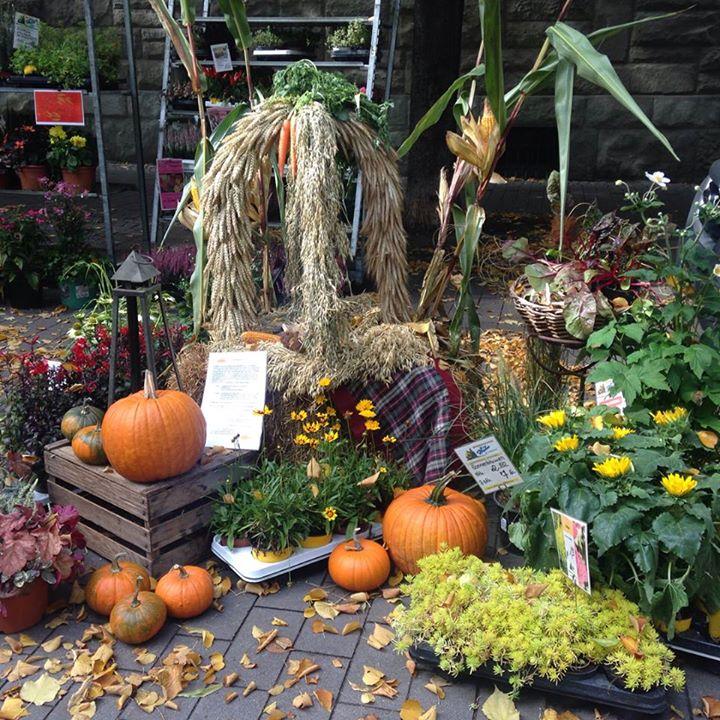 Impressionen vom Erntedankfest auf dem Bauernmarkt