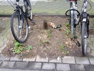 Florastraße 19