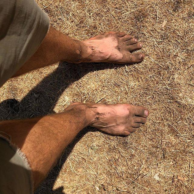 Nach ein paar Stunden im Gartenarbeit stellt man fest 'atmungsaktiv' meint bei Schuhen nicht 'staubdicht' ;-) Der Erdboden ist bei uns bis auf 40 cm Tiefe trocken... #urbangardening