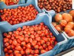 Hitzefrei beim Rheinischen Bauernmarkt auf dem Friedensplätzchen