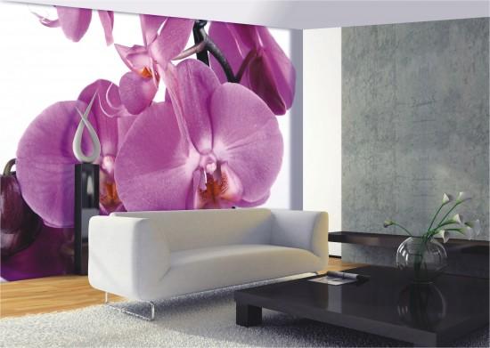 Fototapete Tapete Groe Orchidee Blume Blte Foto 360 cm x