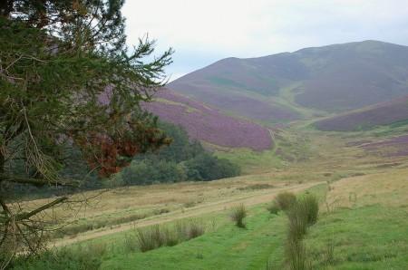 John Buchan Way - path to Broughton Hope