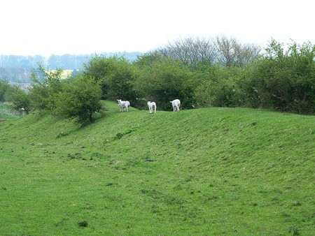 Earthworks at Stanwick Iron Age Camp