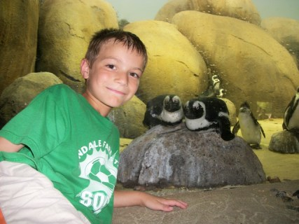 Liam with the penguins