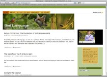 Bird Language site in Safari