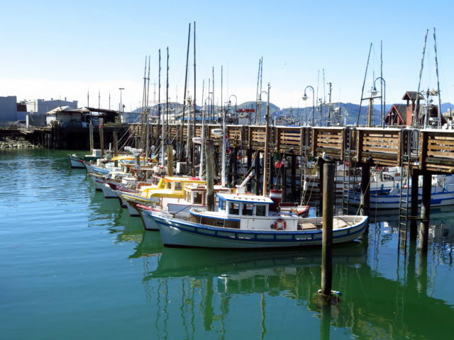 People may scorn Fisherman's Wharf, but this is the real Fisherman's Wharf. These colorfully painted boats have Italian names. The original Fisherman's Wharf fishermen were Italian immigrants who settled in nearby North Beach. San Francisco, United States, North America.