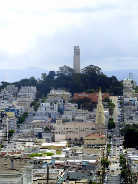 View of Telegraph Hill from Russian Hill. Below Telegraph Hill is Saints Peter and Paul Church on Washington Square. San Francisco, United States, North America.