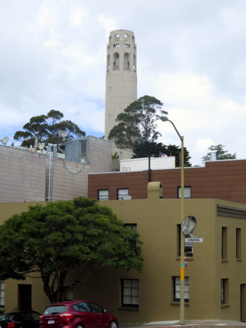 View to the summit and Coit Tower, one of San Francisco's most recognizable landmarks. San Francisco, United States, North America.