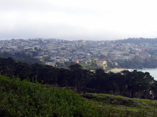 A view from the Presidio before I hiked down to the beach. San Francisco, United States, North America.
