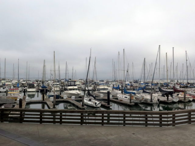 Morning at the Pier 39 Marina. Fisherman's Wharf, San Francisco, United States, North America.