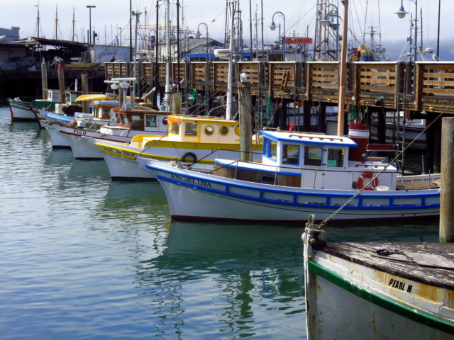 Forget the tourist traps. This is the authentic Fisherman's Wharf. The colorful fishing boats with Italian names carry on the legacy of Italian immigrants' fishing boats that came before. San Francisco, United States, North America.