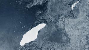Dev buz dağı, Güney Georgia Adası'na çarpacak