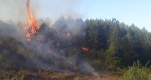 Kastamonu'da meydana gelen orman yangını 6 saat sonra söndürüldü