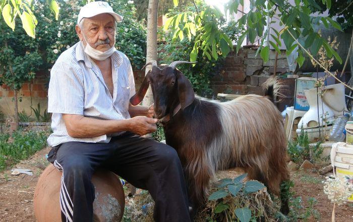Yalnızlıktan sıkılınca sahiplendiği keçiyle dost oldu: 'İnsanlardan bin kat daha iyi geldi'