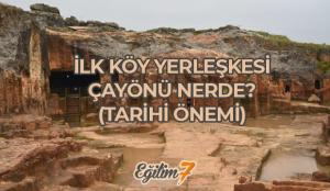 İlk köy yerleşimi Çayönü nerede? Tarihi Önemi