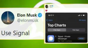 WhatsApp Kan Kaybediyor, Telegram ve Signal Yükselişte
