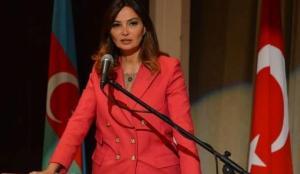 Azerbaycan vekilinden Türk desteğine övgü