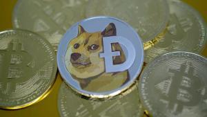 Dogecoin (DOGE) 1 Dolara Ulaşırsa, Hala Şaka Parası mı Olacak?