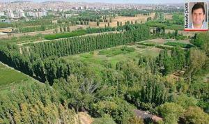 Foça Tatil Köyü yine ihaleye çıktı. AOÇ arazileri ise 10 yıllığına kiraya verilecek