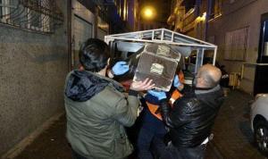 Yine bir kadın cinayeti: Oğuz Ekmenci, Mihrican Ekmenci'yi öldürdü