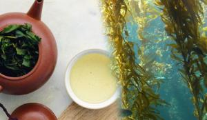 Yosunun faydaları nelerdir? Yosun çayı nasıl yapılır ve neye iyi gelir?