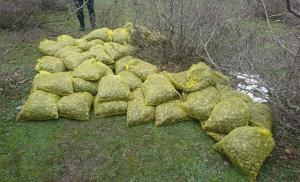 Yunanistan'a Kaçırılmak İstenilen 750 Kilo Midye, Ormanlık Alanda Bulundu