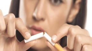 Sigara hayvanlara, insanlara verdiği kadar zarar veriyor