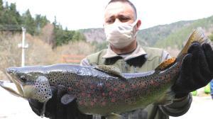 'Bu yıl da 12 bölge devam edecek' deyip açıkladı! Yüz binlerce balık salınıyor