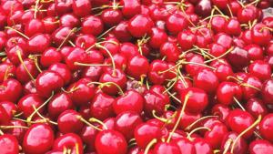 En besleyici 5 yaz meyvesi