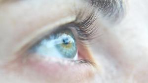 Kadınlarda sarı nokta hastalığı riski daha yüksek