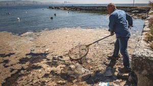 Son dakika haberi: Marmara Denizi'nde müsilaj tehlikesi! 6 aydır yapılmıyor