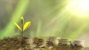 Sürdürülebilir finansman ihraçları ilk çeyrekte rekor kırdı