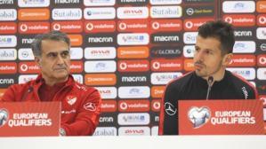 Fenerbahçe'den ayrılan Emre Belözoğlu'na Milli Takım'dan sürpriz teklif
