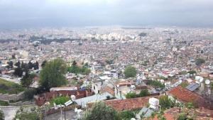 Belediye Başkanından Hatay için dikkat çeken sözler: Suriyeliler belediye başkanlığına aday olsalar kazanırlar