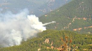 Mersin'de orman yangınına müdahale yeniden başladı!