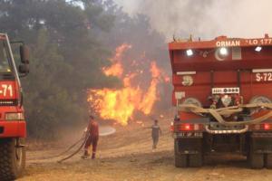 Son Dakika! Manavgat'ta alevlerin arasında kalan 2 yangın işçisi yaşamını yitirdi