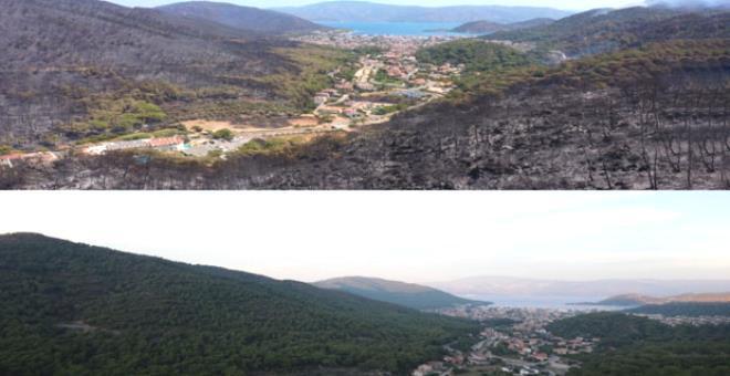 9 gün boyunca yanan Marmaris'ten geriye bu görüntüler kaldı
