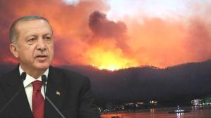 Son Dakika: Cumhurbaşkanı Erdoğan'dan orman yangınlarında terör izi iddialarına yanıt: Tutuklananların ailelerinde PKK bağlantısı var
