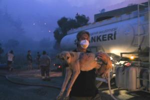 ???? Son Durum   Milas'ta İki Mahalle Tahliye Edildi: 'Yangın Yeniköy Termik Santrali'ne Doğru İlerliyor…'